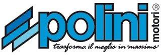 История компании Polini